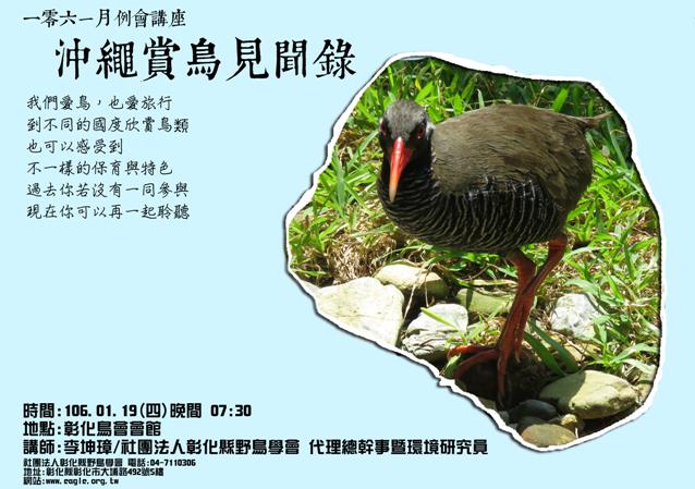 沖繩賞鳥見聞錄