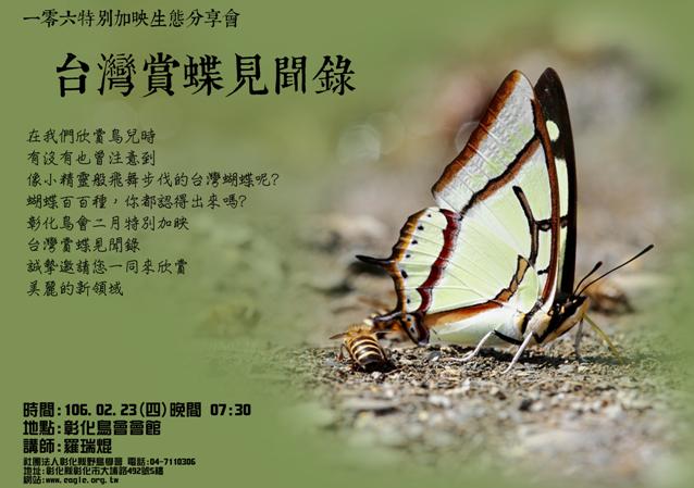 台灣賞蝶見聞錄